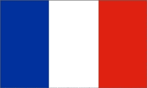 Billede af Canada Flag (60x90cm)