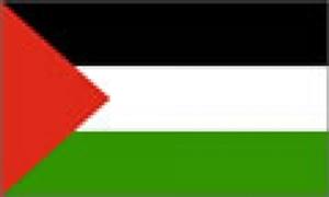 Billede af Palæstina Deluxe Flag (90x150cm)