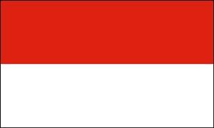 Billede af Indonesien Flag (90x150cm)