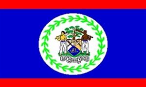 Billede af Belize Flag (90x150cm)