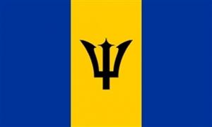Billede af Barbados Flag (90x150cm)