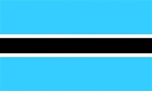 Billede af Botswana Flag (90x150cm)
