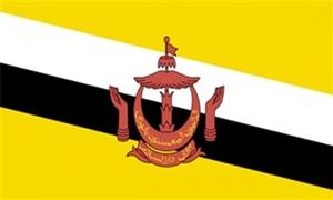 Billede af Brunei Flag (90x150cm)