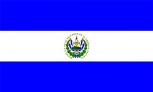 Billede af El Salvador Flag (90x150cm)