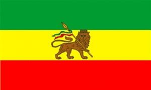 Billede af Etiopien med løve Flag (90x150cm)