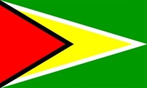 Billede af Guyana Flag (90x150cm)