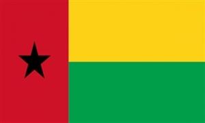Billede af Guinea-Bissau Flag (90x150cm)