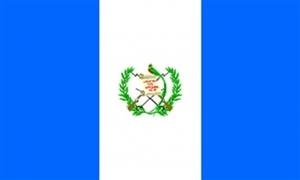 Billede af Guatemala Flag (90x150cm)