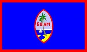 Billede af Guam Flag (90x150cm)