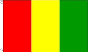 Billede af Guinea Flag (60x90cm)