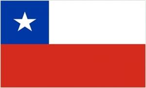 Billede af Chile Flag (150x240cm)