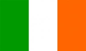 Billede af Irland Flag (150x240cm)