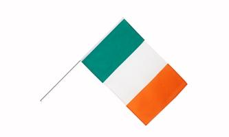 Billede af Irland Håndholdt Papirflag (20x27cm)