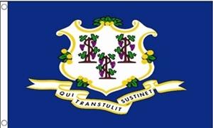 Billede af Connecticut Flag (90x150cm)