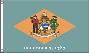 Billede af Delaware Flag (90x150cm)