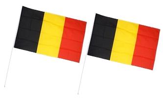 Håndholdte Papirflag 145x190mm (A5)