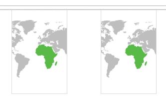 Afrika Guirlander 3m