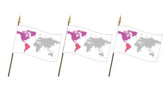 Amerika Håndflag 30x45cm