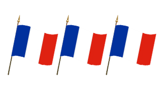 Frankrig Håndflag 30x45cm