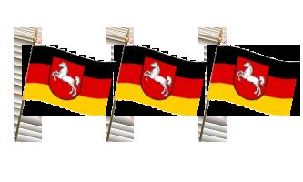 Tyskland Håndflag 15x22cm