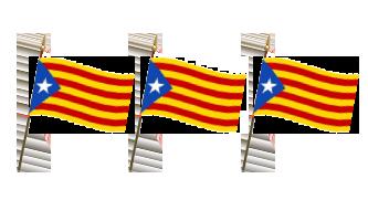 Spanien Håndflag 15x22cm