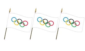 Sport Håndflag 15x22cm