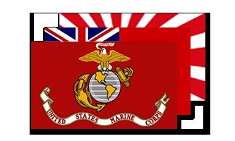 Historie og Militær Flag 60x90cm
