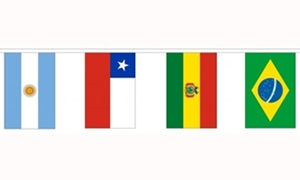 Image of   12 South American Nations Guirlander 5m (12 flag)