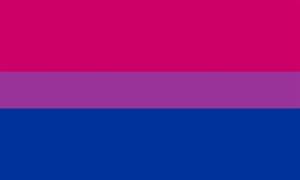 Image of   Bi-Pride Flag (90x150cm)