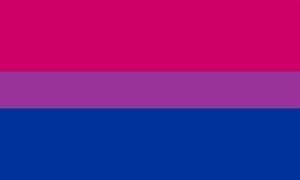Image of   Bi-Pride Flag (90x150cm)