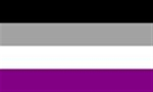 Image of   Asexual Flag (90x150cm)