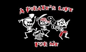 Billede af A Pirates Life - Pirat Flag (90x150cm)