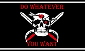 Image of   Do Whatever You Want Flag (90x150cm)