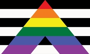 Image of   Straight Ally Flag (90x150cm)