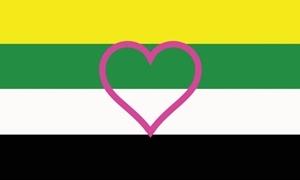 Image of   Skoliosexual Flag (90x150cm)