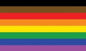 Image of   More Colour More Pride Flag (90x150cm)