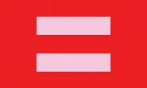 Image of   Equality (Red/Pink) Flag (90x150cm)