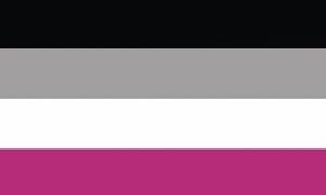Image of   Gynephilia Flag (90x150cm)