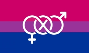 Billede af Bi-Pride Symbol Flag (90x150cm)