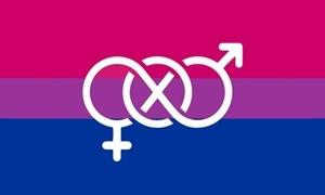 Image of   Bi-Pride Symbol Flag (90x150cm)