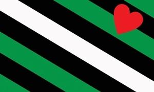 Billede af Boi Pride Flag (90x150cm)