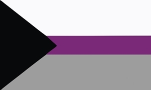 Image of   Demisexual Flag (90x150cm)