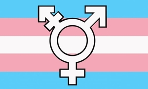 Image of   Transgender New Symbol Flag (90x150cm)