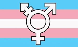 Billede af Transgender New Symbol Flag (90x150cm)