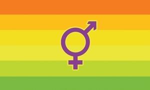 Image of   Hermaphrodite Flag (90x150cm)