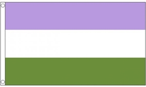 Image of   Genderqueer Flag (90x150cm)