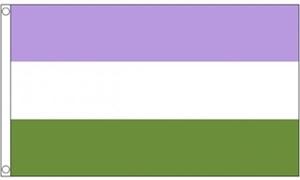 Image of   Genderqueer Flag (90x150cm)