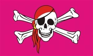 Image of   Pink Pirate - Pirat Flag (90x150cm)