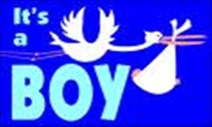 Image of   Its a Boy Flag (90x150cm)