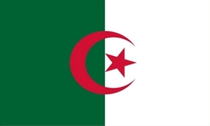 Image of Algeriet Flag (60x90cm)